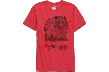 bear-t-shirts-manufacturers-voguesourcing-tirupur-india